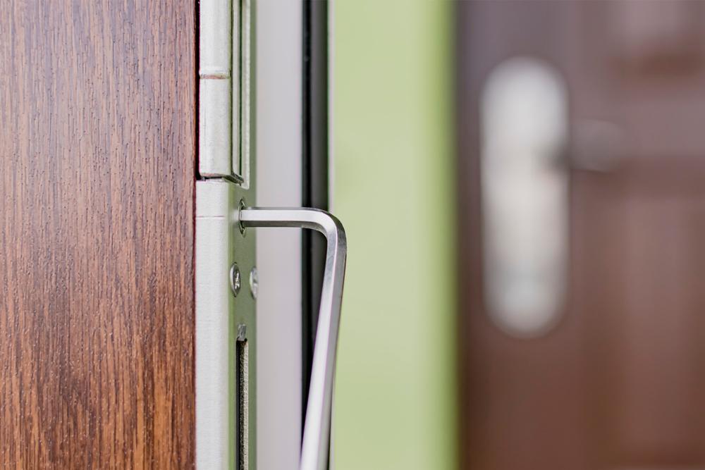 regulirovka-vhodnoi-dveri-vladg